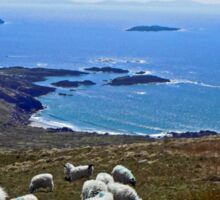 Ireland - Ring of Kerry Sheep Sticker