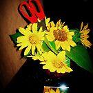Sunflowers. by eyeswideshut23