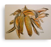Drying sweetcorn, Tuscany. Pen and wash. Framed. 42x32cm Canvas Print