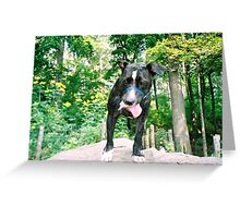 I'M NOT TIRED YET! Greeting Card