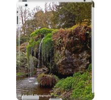 Ireland - Blarney Garden Waterfall iPad Case/Skin