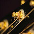 Musical focus by catrionam