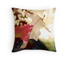 Life Is Dying..... Throw Pillow