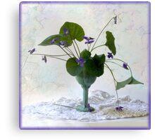 violet formal Canvas Print