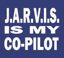 J.A.R.V.I.S. IS MY CO-PILOT by PhantomRush