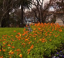 St Kilda Road, Melbourne by Leanne Nelson