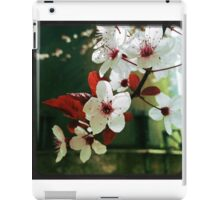 Blossoms in Red and White iPad Case/Skin
