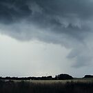 Stormy. by mustash