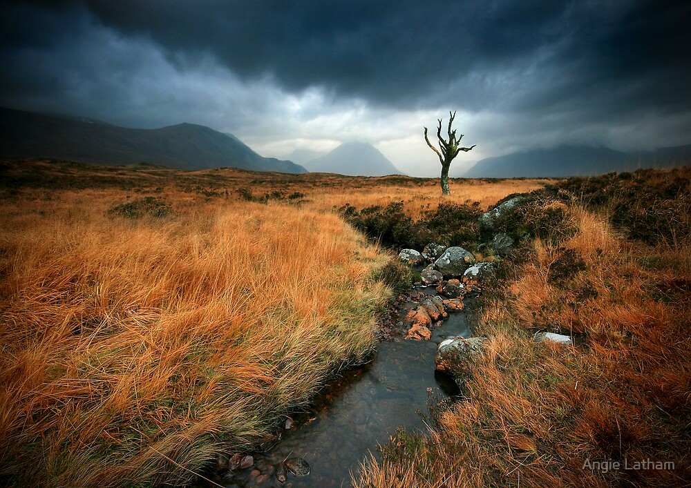 Quot Scotland Rannoch Moor Quot By Angie Latham Redbubble