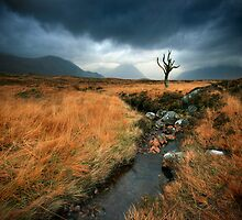 Scotland : Rannoch Moor by Angie Latham