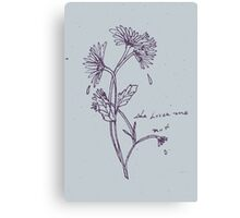 { she loves me not } Canvas Print
