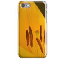 Spring is bursting out all over... iPhone Case/Skin