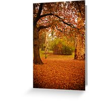 Autumn leaves cover the ground at La Trobe Uni Greeting Card
