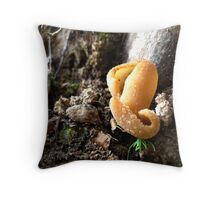 Sombrero Mushroom Throw Pillow