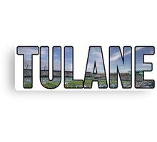 Tulane Yulman Stadium Canvas Print