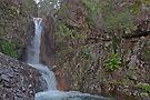 Lower  Rollasons Falls by mspfoto