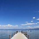 Tahoe   by BLAMB
