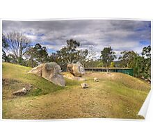 Granite Sculptures Poster