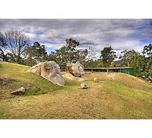 Granite Sculptures Photographic Print