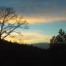 Sunset Silhouette In The San Bernardino Mountains by Bearie23