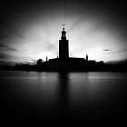 Stockholm City Hall by Mikael Raymond