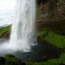 Seljalandsfoss Iceland by pucci ferraris