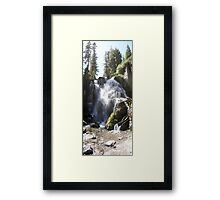 Who let the water on... Who... Who Framed Print