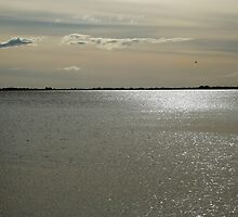 Silver reflection by Antanas
