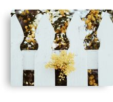 flowers and fence Canvas Print