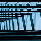 Blue Lines 2 by Elizabeth Bravo