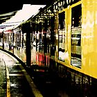 The Orient Express by Catherine Hamilton-Veal  ©