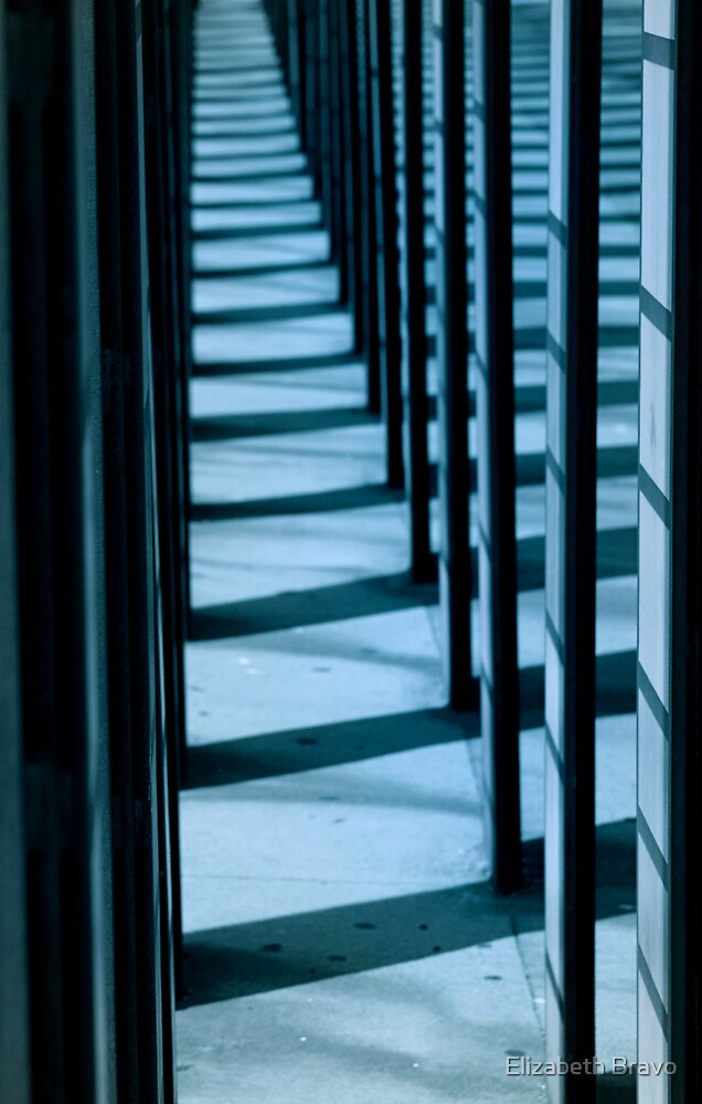 Blue Lines 1 by Elizabeth Bravo