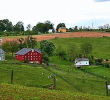 Pennsylvania farm  by tanmari