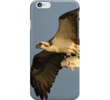 Osprey Fishing iPhone Case/Skin