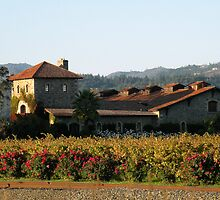 Winery of the Great  Napa Valley by HanieBCreations