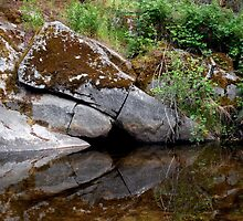 Reflected Rock Wall by Chris Gudger