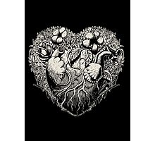 Foliage Heart II Photographic Print