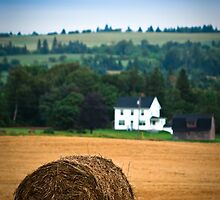 The Hay Bale by Charles Plant