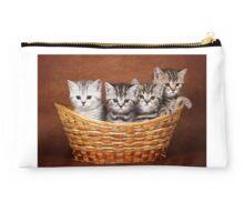 Four striped kitten in a basket Studio Pouch