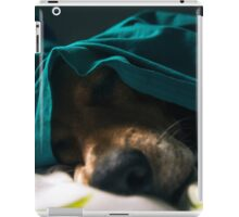 Courage the Beagle Sleeping - 1 iPad Case/Skin