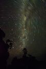 Milky Way by Michael Treloar