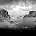 Yosemite Valley Fog by Doug Scott