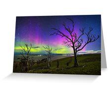 Aurora Treescape Greeting Card