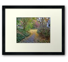 Pathway In Fall Framed Print