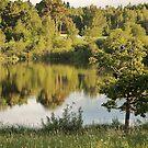 Estonian landscape by loiteke