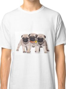 Three charming pug puppy Classic T-Shirt