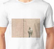 Skyfalls  Unisex T-Shirt