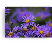 Blue Tuesday Canvas Print