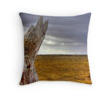 HDR Outback Throw Pillow