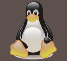 Penguin Linux Tux Crystal One Piece - Short Sleeve